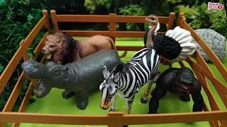 Приключения игрушек Новая серия. Пропажа животных из зоопарка
