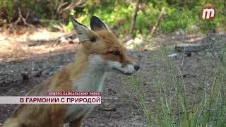 Невероятная красота природы и животного мира Фролихинского заказника