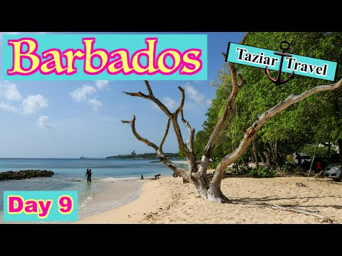 Barbados Travel Vlog Day 9 - 2018