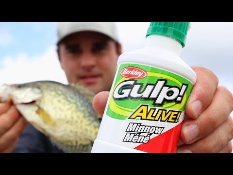Does Berkely Gulp Alive MINNOW Catch Crappie? (crappie Fishing) Ep.13 Of 30 Day Challenge