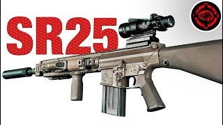 Airsoft SR25 | Long Range and Rapid Follow Up DMR Gameplay