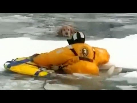 Lance Houston - Firefighter Risks His Life on Frozen River to Rescue Dog