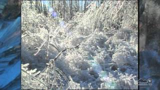 Remembering the 1998 Ice Storm in Upstate New York and Montreal