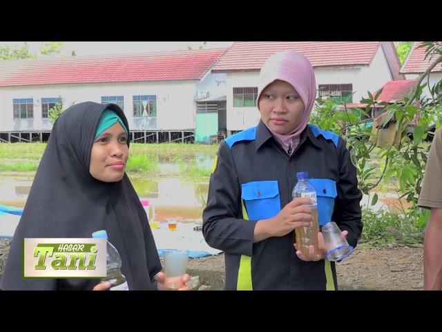 Habar Tani Episode 4  - Penggunaan Pestisida Alami Segmen 3 #TV Tabalong