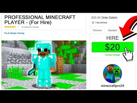 I HIRED A PROFESSIONAL MINECRAFT PLAYER FOR $20!