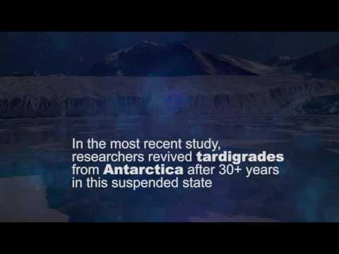 A Matter of Fact: Tardigrades | SciTech Now