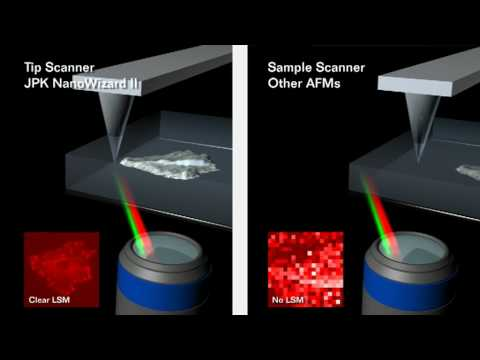 Atomic Force Microscopy - JPK NanoWizard® AFM - tip scanner vs. sample scanner