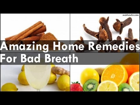 Natural Home Remedies For Bad Dog Breath