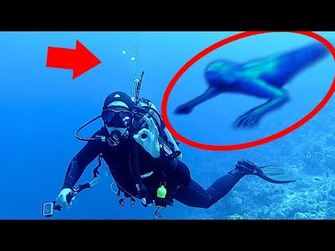 5 Mysterious Underwater Creatures Caught on Camera & Spotted in Real Life