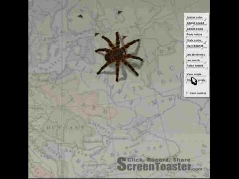 Araignée 3D en flash