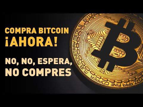 ¿Es El Bitcoin Una Estafa? Para Saberlo Debes Conocer La Primera Burbuja Especulativa De La Historia