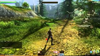 ArcheAge Alpha Gameplay 01 Character Creation and Game Introduction