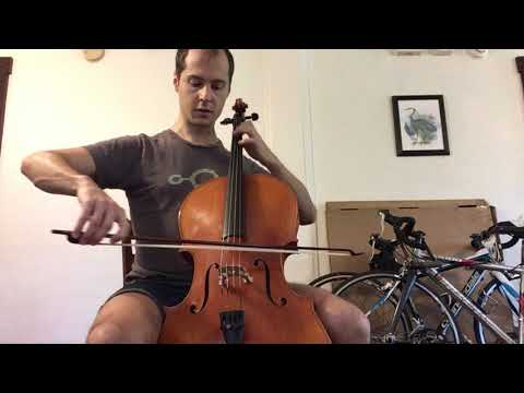 singing woods violin shop tenor violin for sale