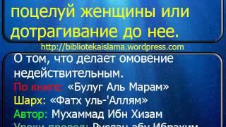 243  Портит ли омовение поцелуй женщины или дотрагивание до нее