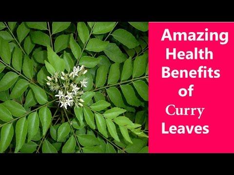 करी पत्ते के अद्भुत फायदे  | Curry Leaves for Hair Loss | Curry Leaves for Diabetes