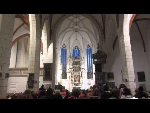 Saint Martin's Day / Der Sankt Martinstag in Pegau - 4