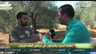 يوم جديد | ناشط: شجرة الزيتون تروي قصص كفاح الشعب الفلسطيني ضد الاحتلال