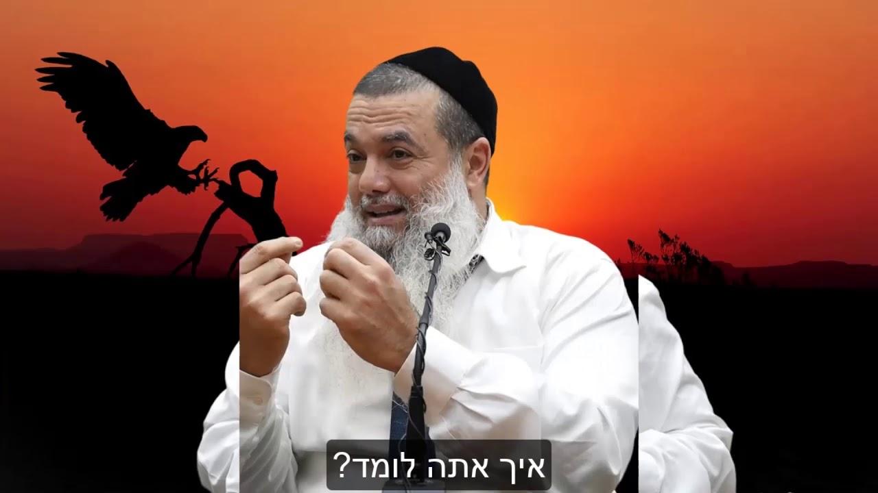 הרב יגאל כהן - קצרים | נפלת כמה פעמים? אז מה? תקום על הרגליים! [כתוביות]