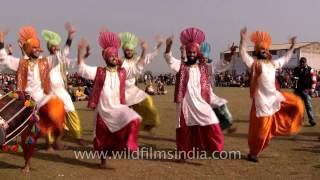 Popular Punjabi dance Bhangara performed at Kila Raipur