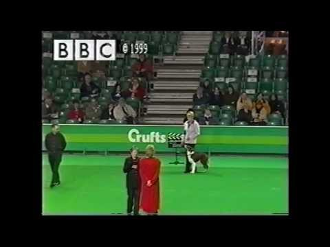 Crufts 1999 - Mary Ray and Lunarlite Lady in Red