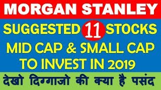 Morgan Stanley suggested mid cap small cap to buy in 2019 India | Multibagger shares for long term