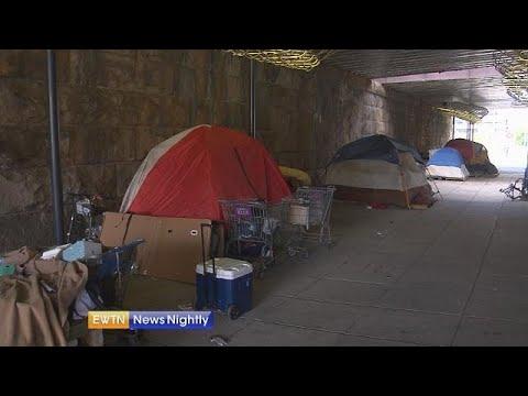 President Trump says homelessness is destroying cities like Los Angeles - EWTN News Nightly