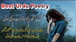 Heart Touching Poetry In Urdu Hindi || 2 Line Poetry || Poetry With Voice ||  Poetry In Urdu