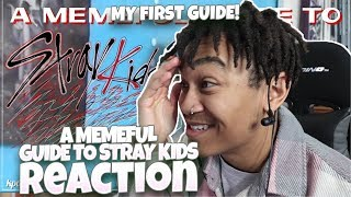 A MEMEFUL GUIDE TO STRAY KIDS - REACTION