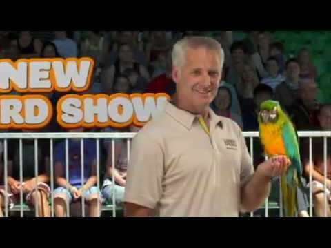 Rainbow Springs 30sec TV Commercial