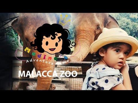 Outdoor Play | Journey to the Malacca Zoo Animal Kingdom | Medina's Adventure Time
