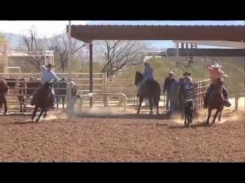 Kramer - 7yo AQHA Sorrel Head Horse FOR SALE