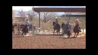 Kramer - 7yo AQHA Sorrel Head Horse FOR SALE