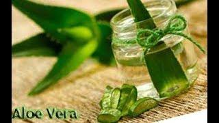 Alo Vera Nedir?Mucizevi Bitkinin İnanılmaz Faydaları (Sesli Anlatım)