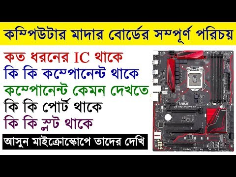 Computer Motherboard |Explain All Components Of Motherboard | Motherboard Explained In Bengali