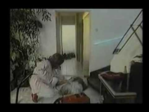 Spot Aspiradoras Philips 1988 (Chile) - YouTube - photo#7