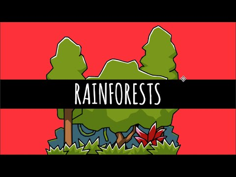 Rainforests - The Most Important Ecosystem Ever - GCSE Geography
