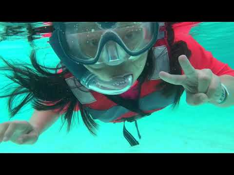 MarineLife Discovery Park Bintan