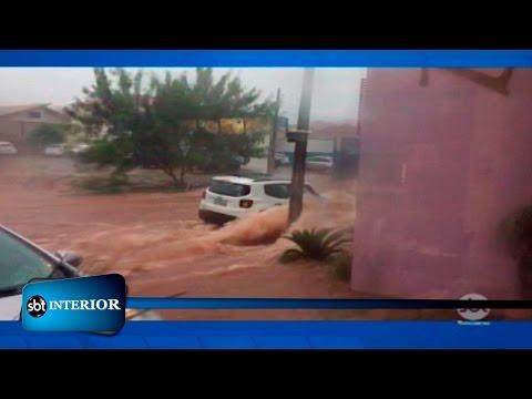 Chuva causa estragos na região de Rio Preto