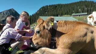 Sommerurlaub in der Alpenwelt Karwendel