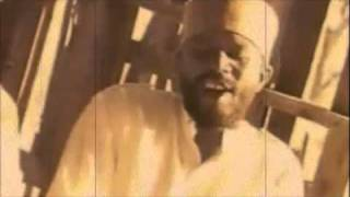 Beres Hammond - No Disturb Sign
