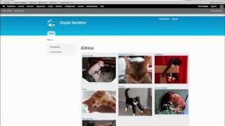 Drupal 7 Advanced Views Tip: Contextual Filters