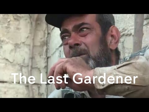 Inside Aleppo: the