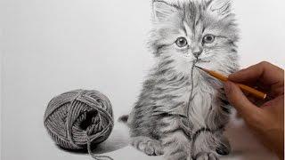 Рисунок кота карандашом (как нарисовать кота) - ускоренное видео(Рисунок кошки карандашом, как нарисовать кошку карандашом на бумаге - ускоренное видео. В этом ролике вы..., 2015-07-30T15:20:51.000Z)