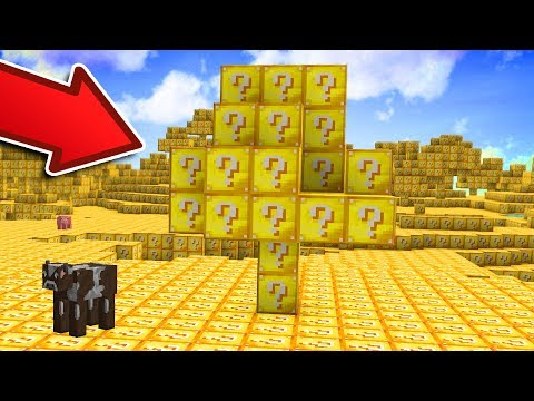 WHAT IF MINECRAFT WAS MADE OF LUCKY BLOCKS?