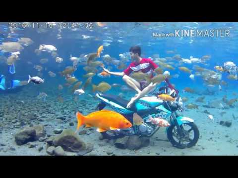 Wisata Air Umbul Ponggok,klaten-jawatengah