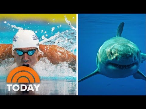Michael Phelps Vs. Shark: See The Dramatic Trailer | TODAY