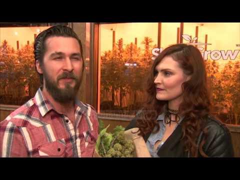 Los Angeles, një buqetë hashashi për Shën Valentin - Top Channel Albania - News - Lajme