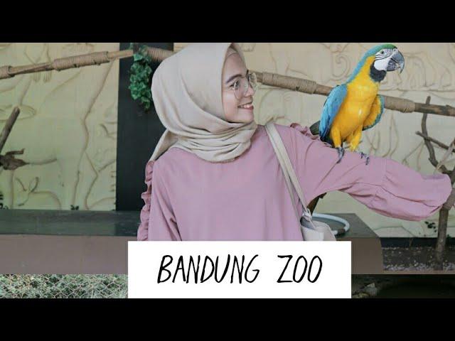 #NVVLOG5 @ KEBUN BINATANG BANDUNG ( Bandung Zoo) SUASANA BARU !!! | Nova Angelia D