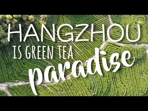 HANGZHOU is a TEA PARADISE