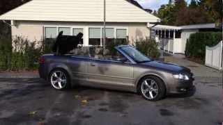 Audi A4 Cabrio Smart Top